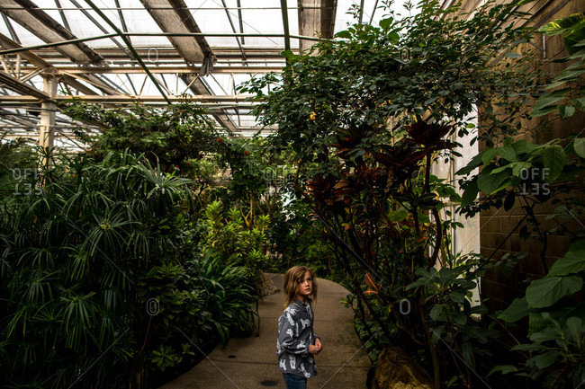 Boy looking at plants while walking alone through conservancy