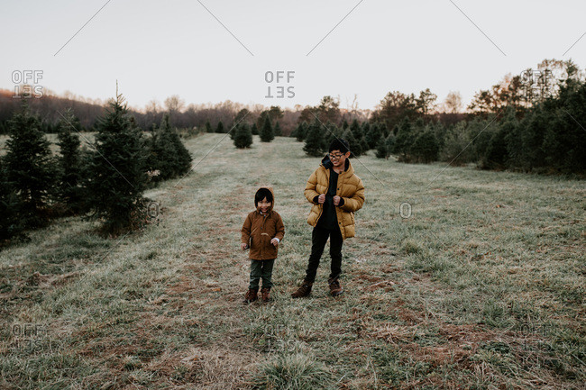 Little boy and older brother standing in field of pine trees