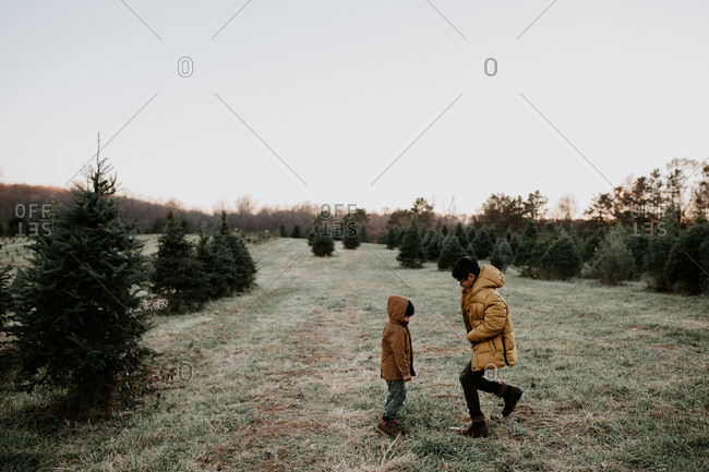 Little boy and older brother playing in a field of pine trees
