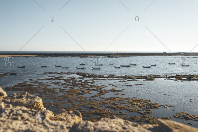 Rows of distant anchored boats on Spanish coast