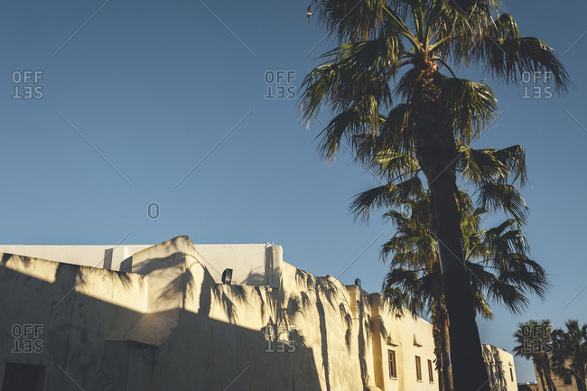 Palm tree shadows on warm stucco building