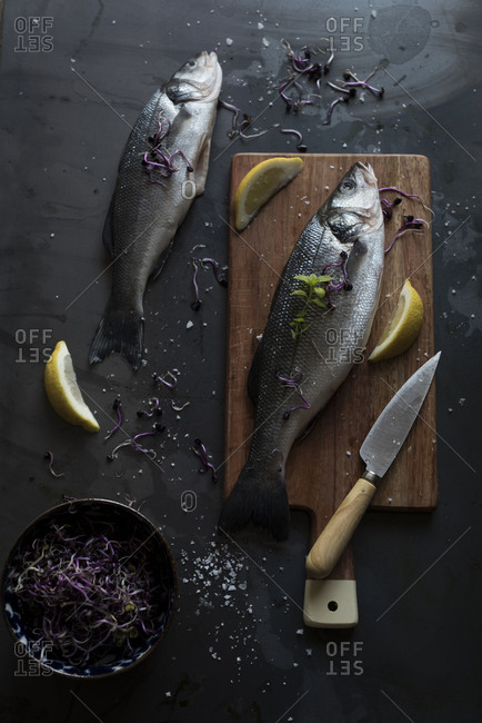 Raw sea bass prepared for being cooked