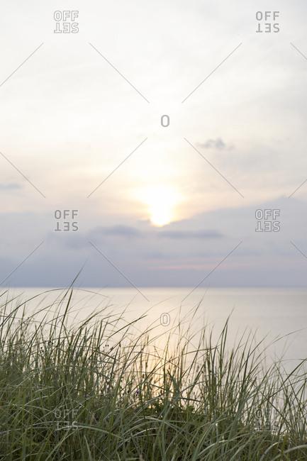 Gentle seaside sunrise view from field of grass