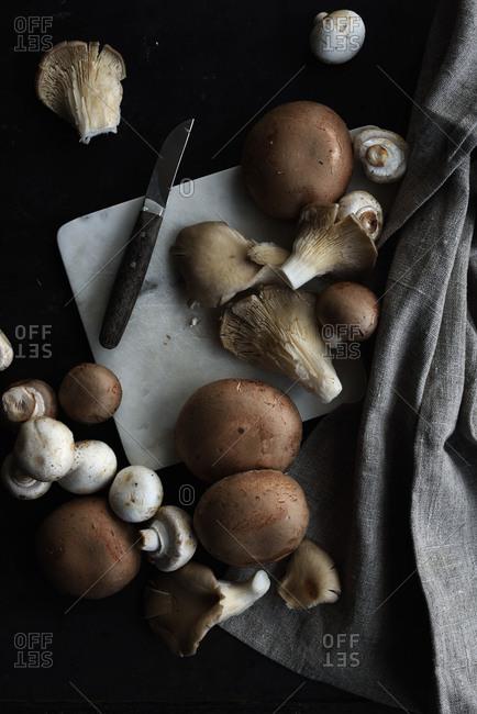 Variety of mushrooms on dark table