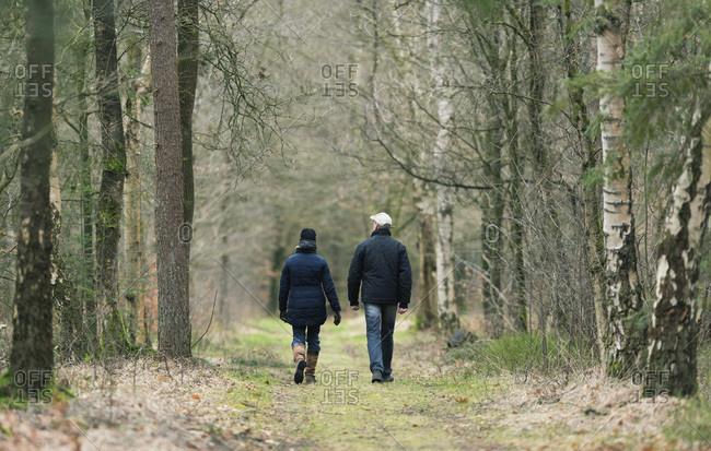 Man and woman walking on pathway in winter forest, rear view