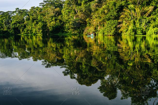 Costa Rica- Tortuguero- Landscape with reflection in the mangroves of Tortuguero