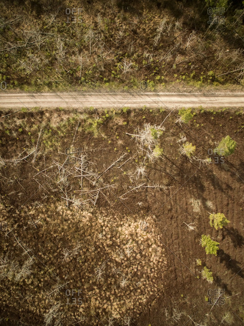 Aerial view of straight empty road surrounded by dead trees on the ground in Estonia