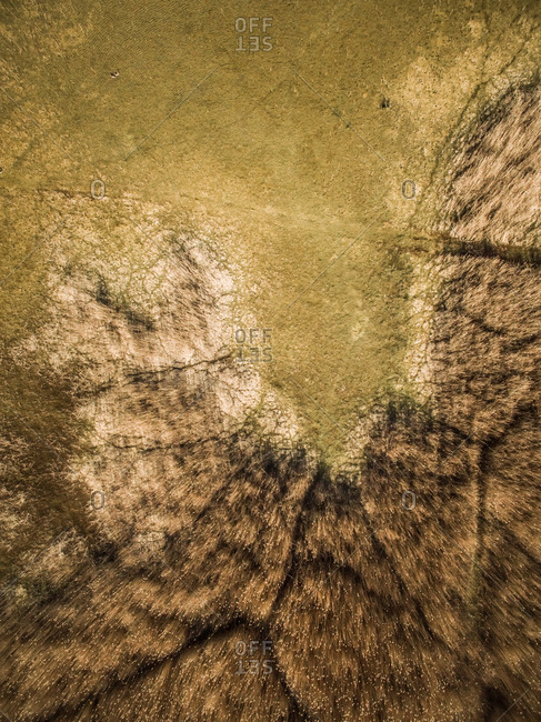 Abstract aerial view of wetland landscape in Island Vormsi in Estonia