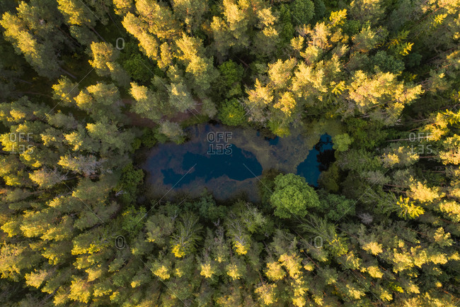 Aerial view of a small lake hidden in the middle of the forest in Estonia
