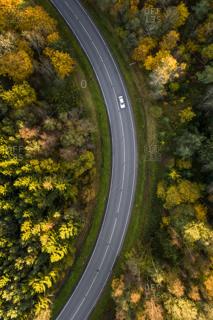 Aerial view of a car driving across the colorful nordic forest at fall in Estonia