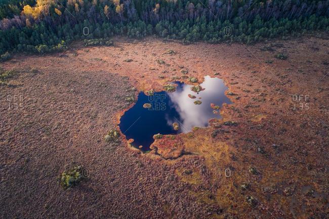 Aerial view of Marimetsa bog in natural reserve in Estonia