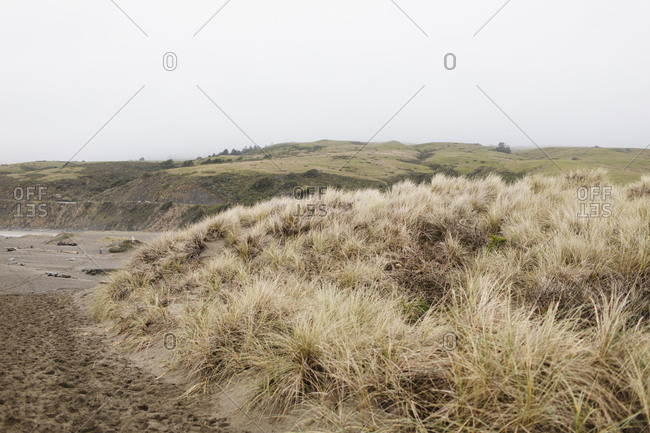 Northern California pacific coast
