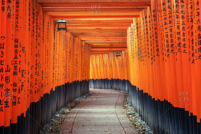 Rows of torii gates at Shinto shrine in Kyoto, Japan