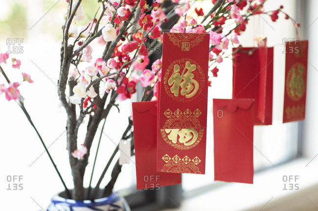 Red envelopes and plum blossom