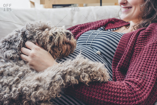 Midsection of pregnant woman with poodle at home