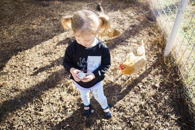 High angle view of girl holding egg while standing at poultry farm