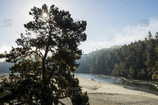 Beautiful morning light illuminates the Big River and beach in Mendocino, California