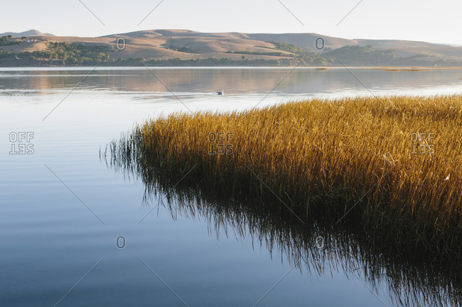 Landscape with bay and open spaces of marshland, hills in the distance