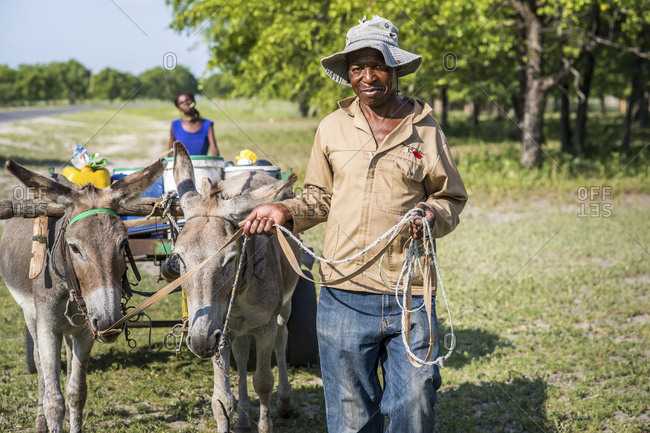 February 22, 2015: Africans With Donkeys Pulling A Cart In A Rural Area; Maun, Botswana