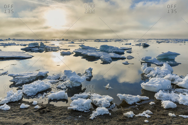 July 25, 2014: Small Pieces Of Sea Ice Congregate On The Shore Of The Arctic Ocean On A Calm Day, Barrow, Arctic Alaska, USA, Summer