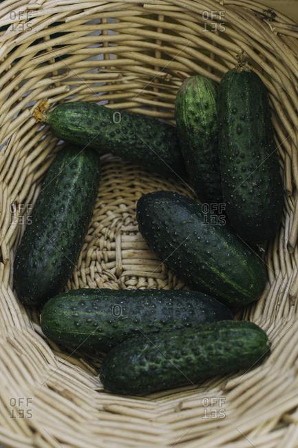 Organic cucumbers at a market