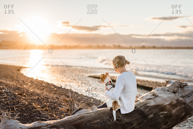 Young girl and her dog watching the sunset sitting on log at the beach