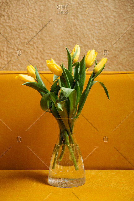 Yellow tulips in a vase on a yellow table