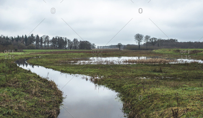 Little stream in field with winter trees on horizon under cloudy sky