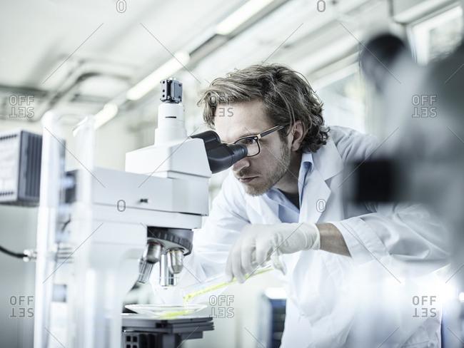 Laboratory technician looking through microscope in lab