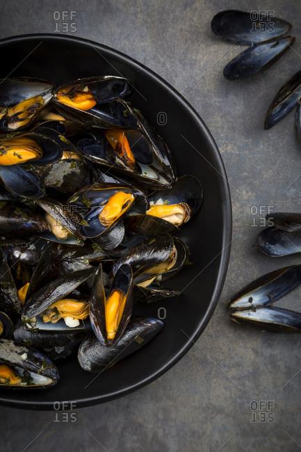 Organic blue mussels
