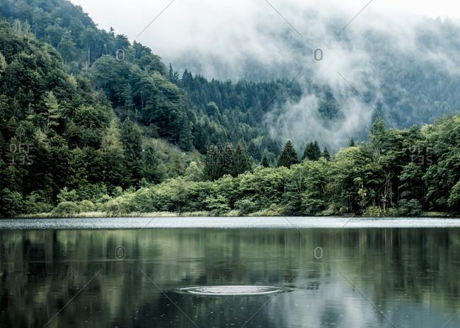 Austria- Salzburg State- Salzkammergut- St. Gilgen- Krotensee Lake- fog