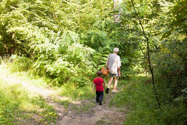 Grandfather and grandson mushroom hunting in forest, Prievidza, Banska Bystrica, Slovak Republic