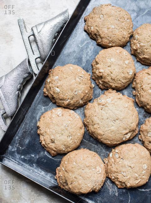 Freshly baked oatmeal cookies on baking pan