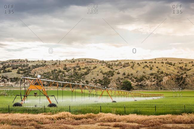 Irrigating agricultural land, Montana, US