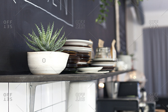 Detail of plant pot and plates on a shelf in a cafe in Sweden