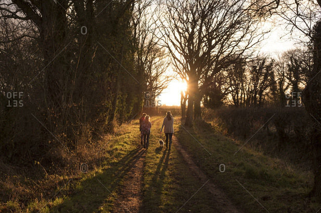A family walking a path in the English countryside, on a late afternoon