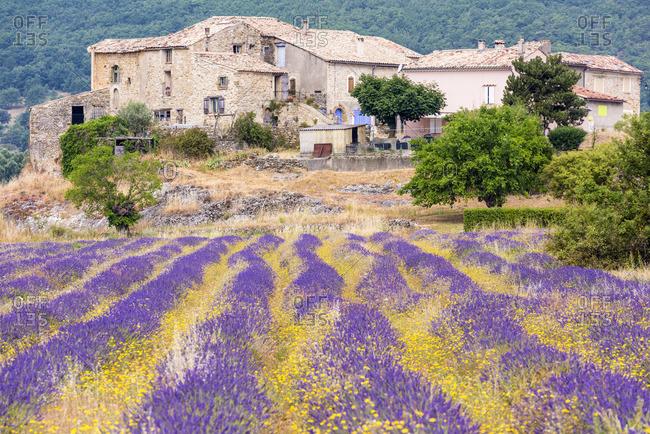 A farmhouse near Banon, Provence, France
