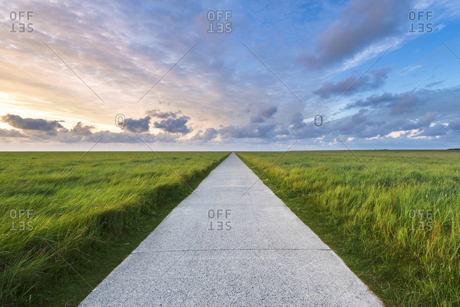 Westerhever, Eiderstedt, North Frisia, Schleswig-Holstein, Germany. Straight pathway along the meadows.