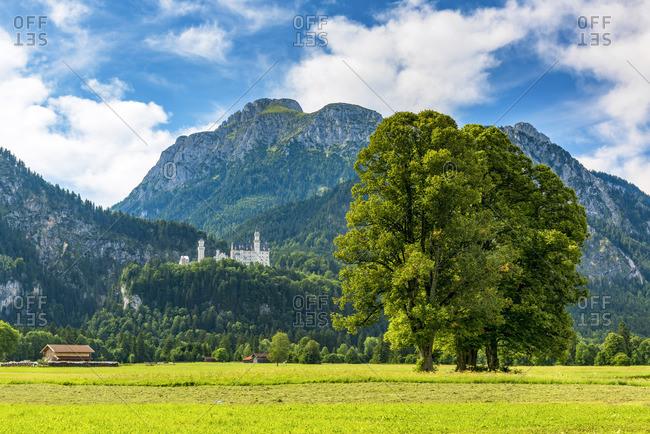 Neuschwanstein Castle or Schloss Neuschwanstein, Schwangau, Bavaria, Germany