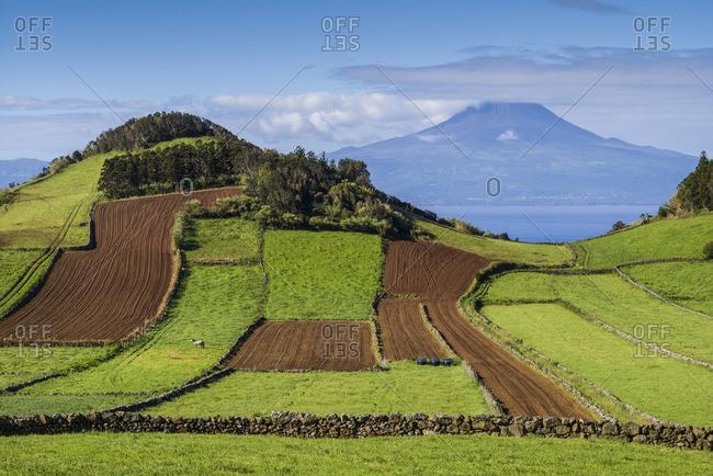 Portugal, Azores, Sao Jorge Island, Rosais of fields and the Pico Volcano