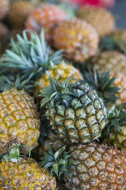 Portugal, Azores, Sao Miguel Island, Ponta Delgada, Mercado da Graca market, native Sao Miguel pineapples