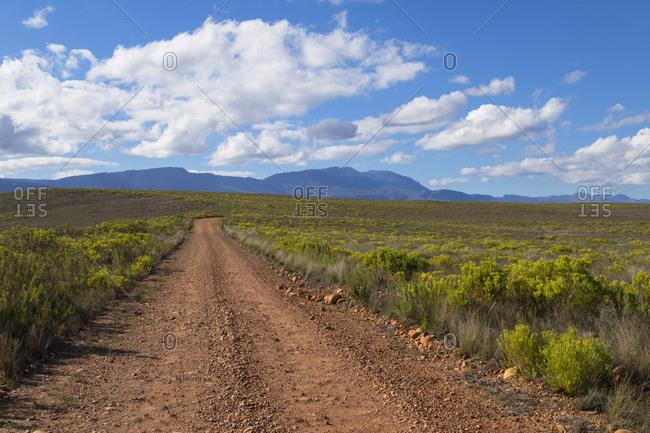 Bontebok National Park, Western Cape, South Africa