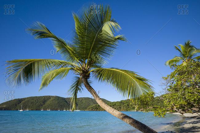 U.S. Virgin Islands, St. John, Trunk Bay, Trunk Bay Beach