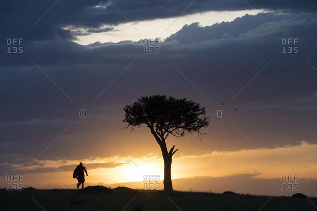 Maasai warrior running on the Maasai Mara, Kenya, as the sun sets