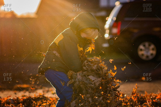 Child playing in leaves in fall