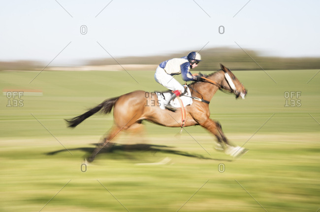 Dorset, UK - February 25, 2018: A horse and jockey gallop at speed