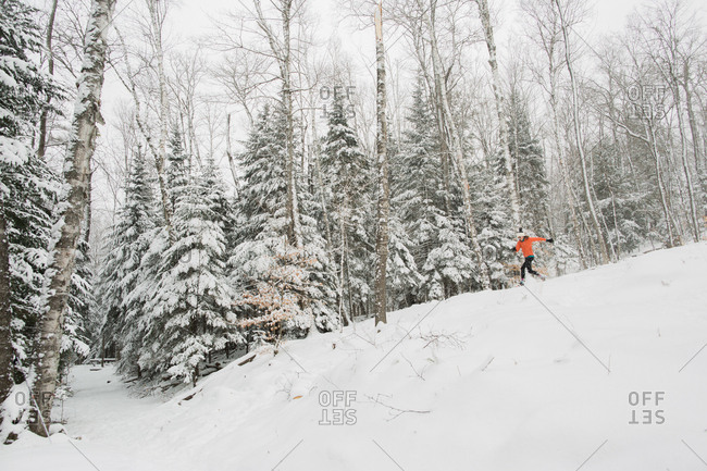 Girl on snowshoe trail in snow-covered forest in the Adirondack Mountains