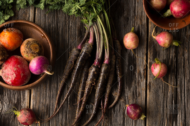 Organic root vegetables including purple carrots, heirloom beets and Easter egg radish