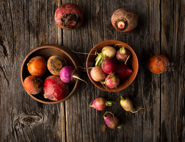 Organic root vegetables including, heirloom beets and Easter egg radish