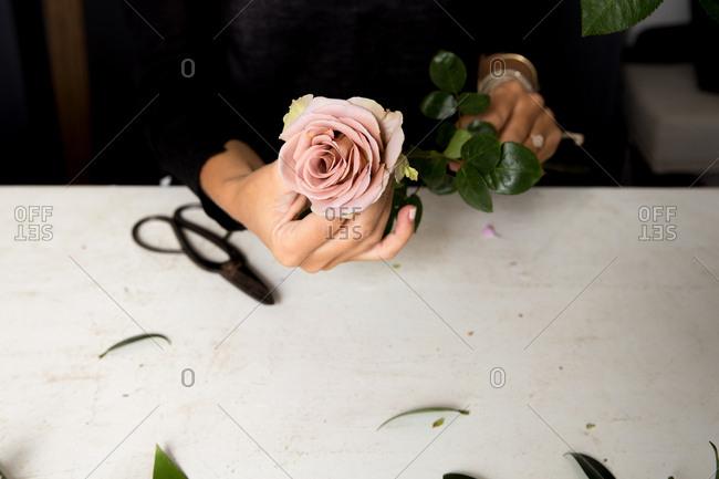 A floral designer holding pink rose in her studio